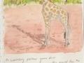 Waterberg Giraffe